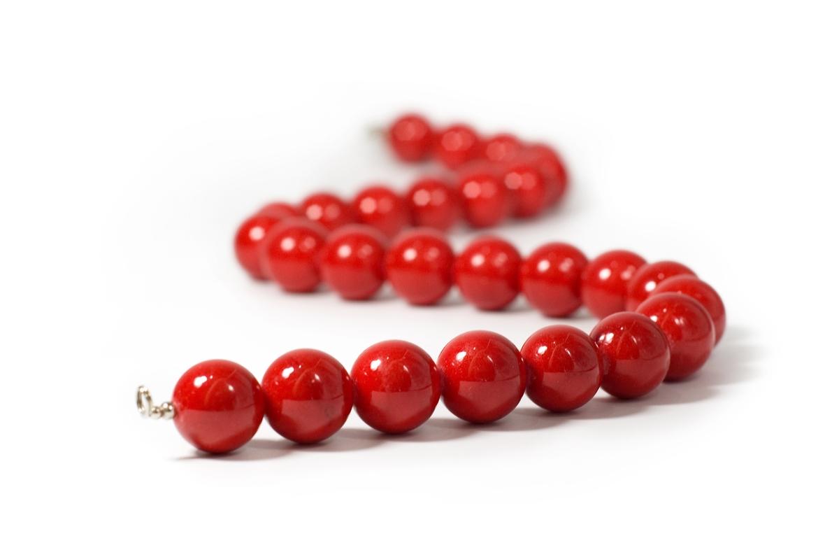 血赤珊瑚2